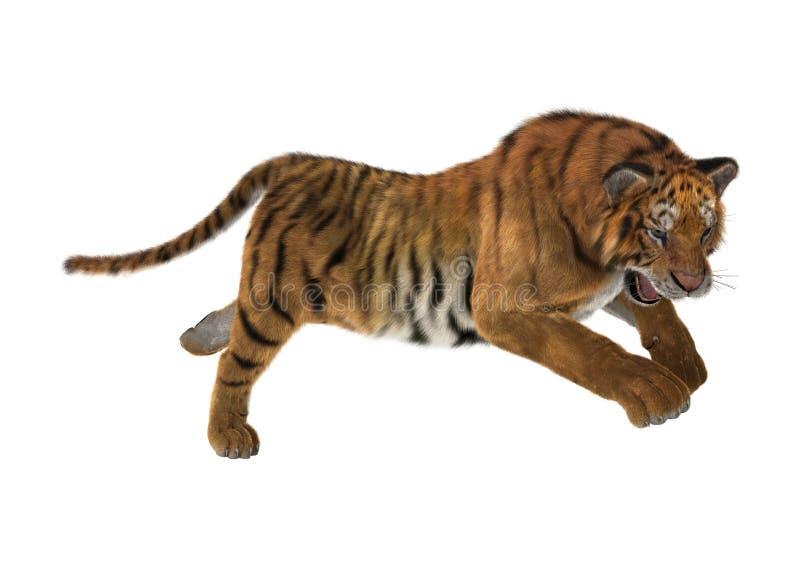тигр перевода 3D на белизне стоковые фото
