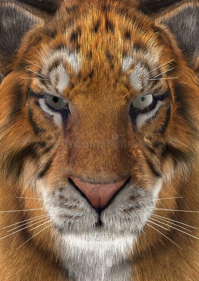 тигр перевода 3D иллюстрация штока