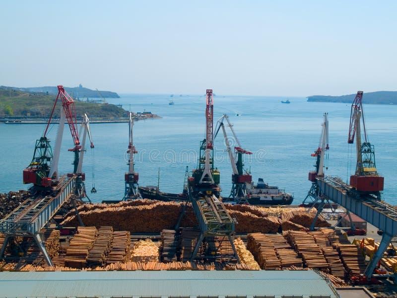 тимберс порта экспорта груза стоковое изображение rf