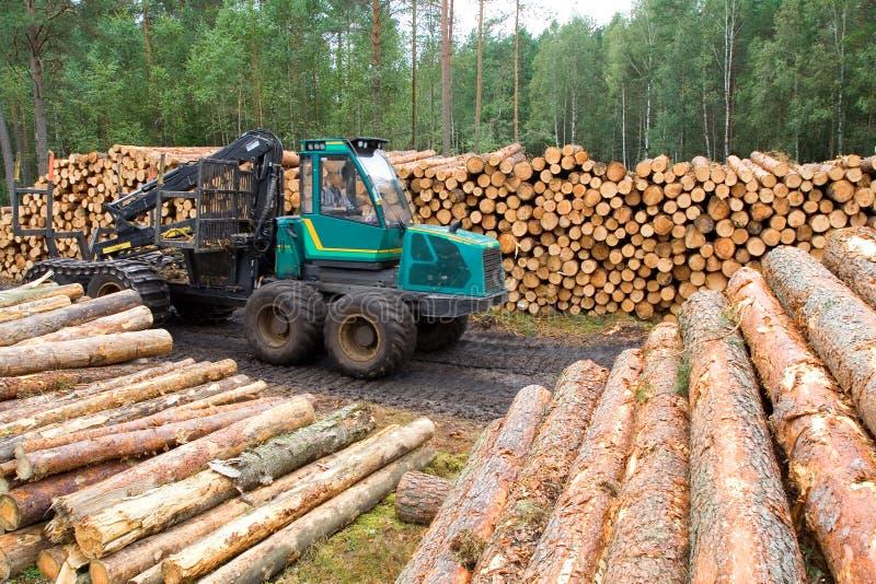 тимберс ресурсов стоковая фотография rf