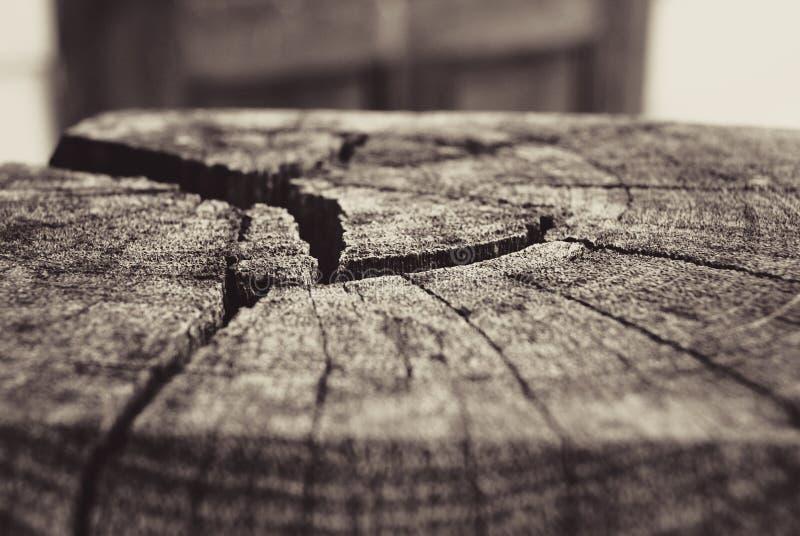 тимберс стоковое фото rf