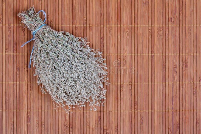 Download Тимиан стоковое изображение. изображение насчитывающей листья - 33726175