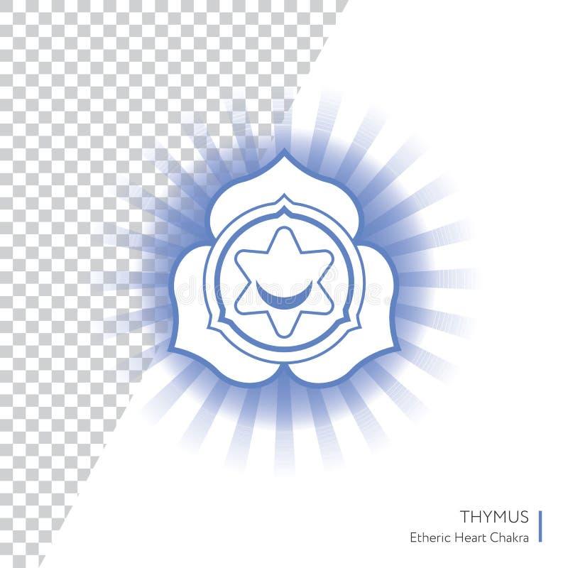 Тимус - chakra человеческого тела бесплатная иллюстрация