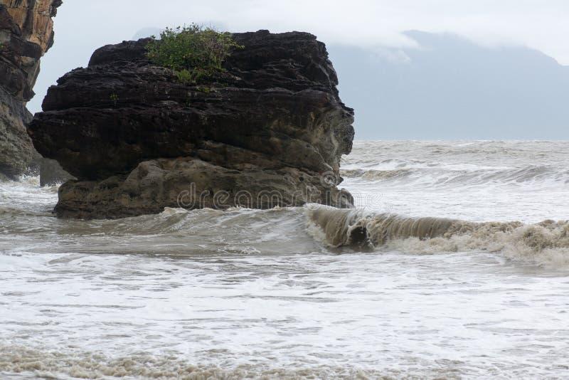 Тинный пляж моря стоковые фотографии rf