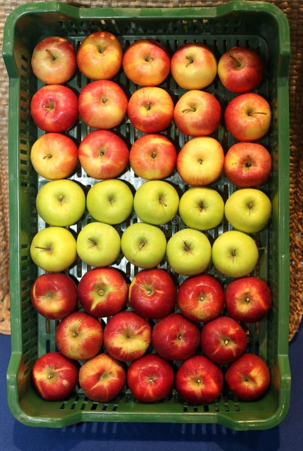 3 типа яблок на розничном рынке стоковое изображение