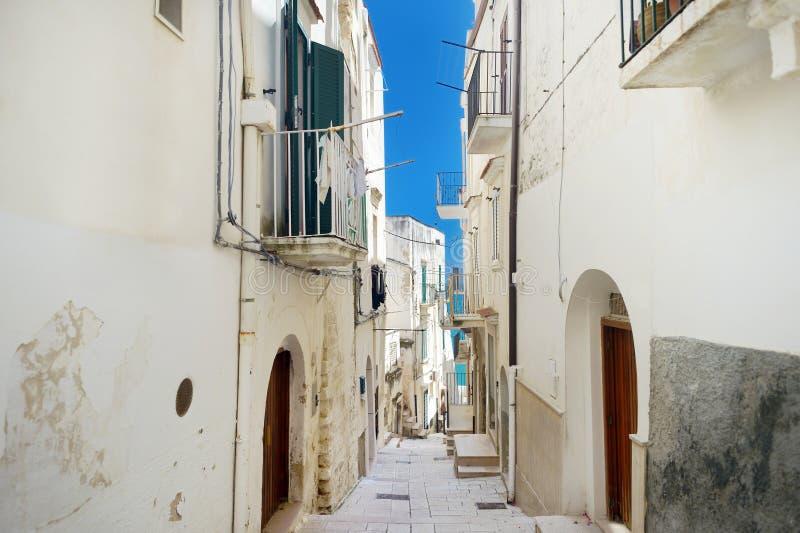 Типичная средневековая узкая улица в красивом городке Vieste стоковые фотографии rf