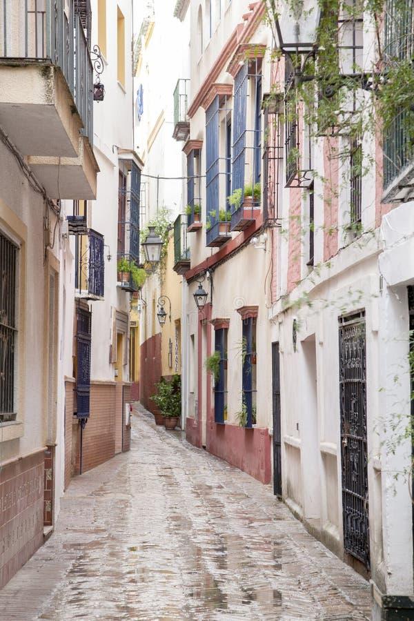 Типичная улица в районе Santa Cruz; Севилья стоковое изображение rf