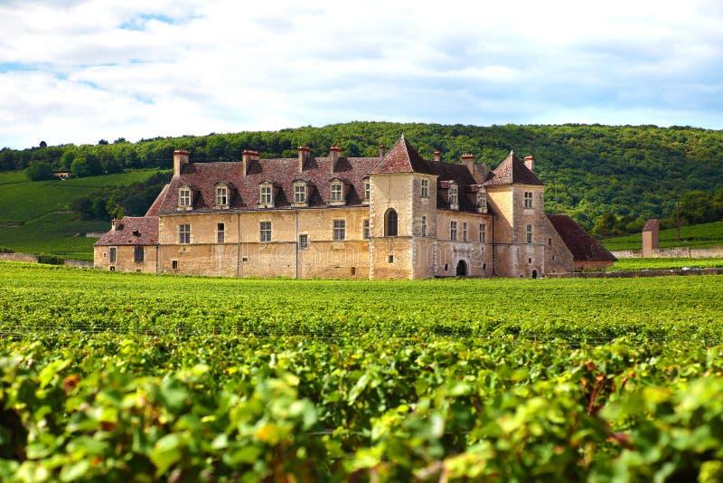 Типичные французские виноградник и замок, Франция стоковая фотография rf