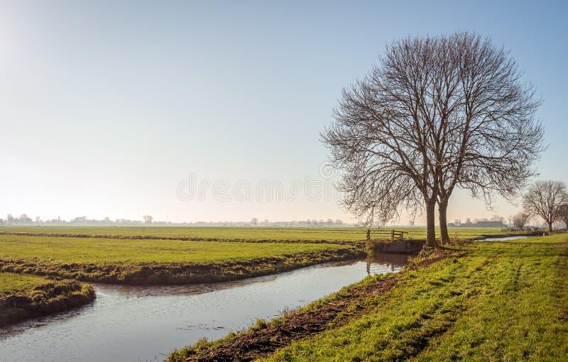Типичный голландский пейзаж в Альблассерварде стоковые фото