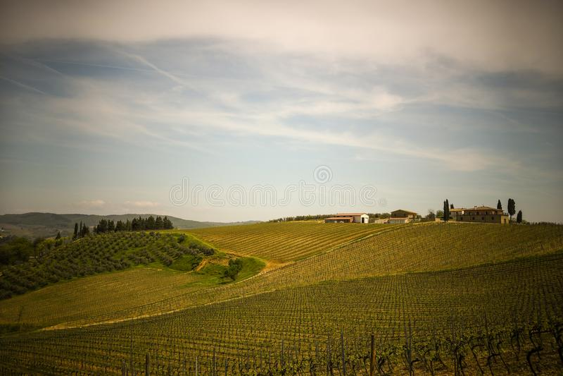 Типичный ландшафт тосканской сельской местности стоковое фото