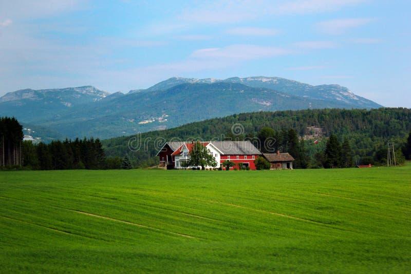 Типичный норвежский сельский ландшафт стоковые фото