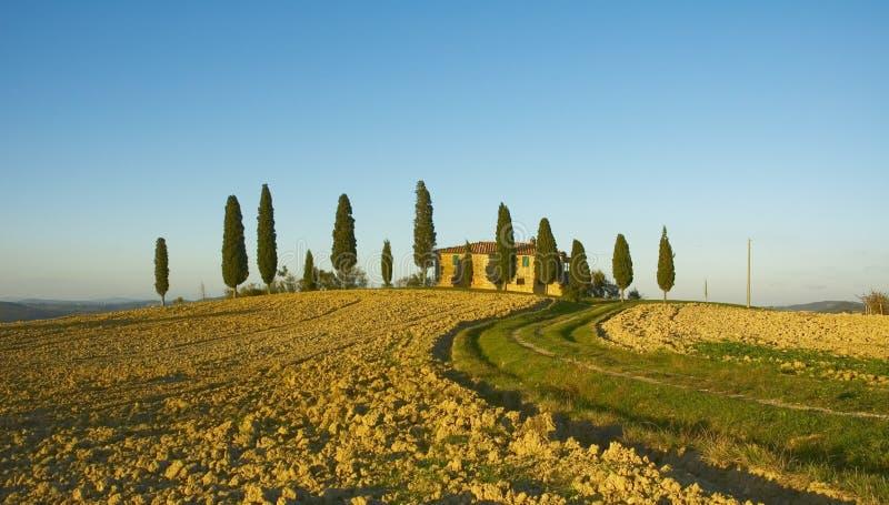 Типичный тосканский ландшафт стоковое изображение rf