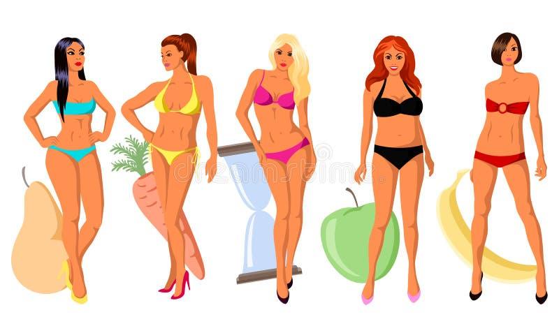 5 типов women& x27; диаграмма s иллюстрация вектора