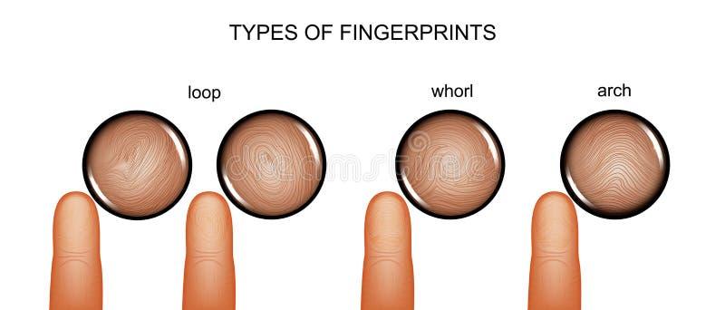 Типы отпечатков пальцев иллюстрация штока