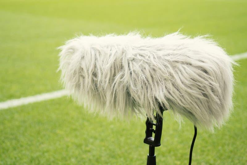 Тип микрофон пола популярный в положении которое близко к объему спорта стоковая фотография rf