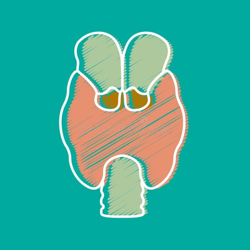 тиреоид Инкреторная железа Болезнь инкреторной системы Узлы тиреоида, аутоиммунный тиреоидит, диффузный токсический зоб иллюстрация вектора