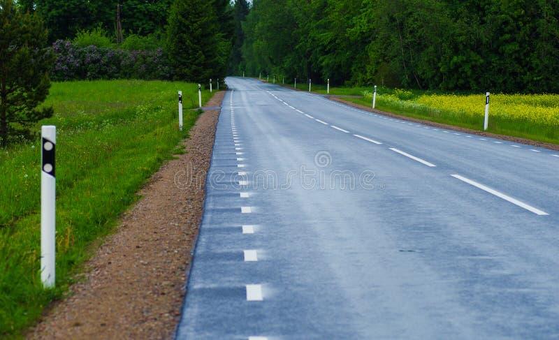 Тихая дорога после дождя стоковое фото rf