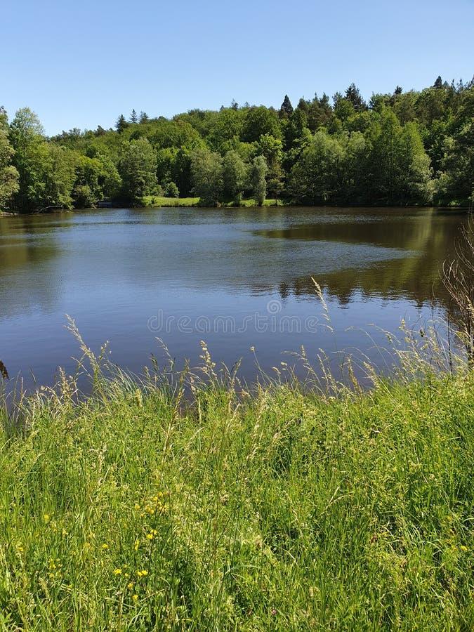 Тихие поля озера стоковая фотография rf