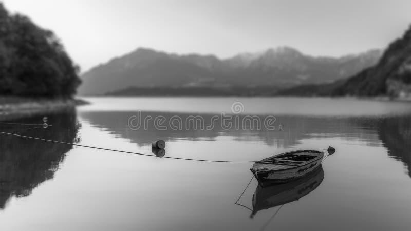 Тихий на озере в черно-белом стоковые фотографии rf