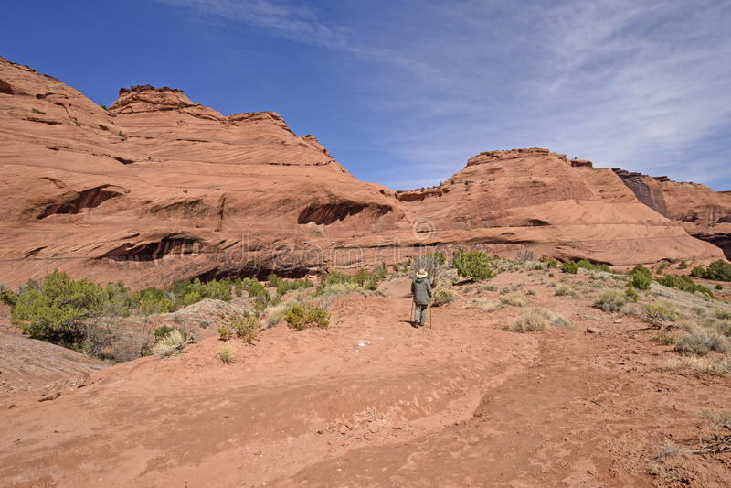 Тихий поход в пустыне стоковые изображения rf
