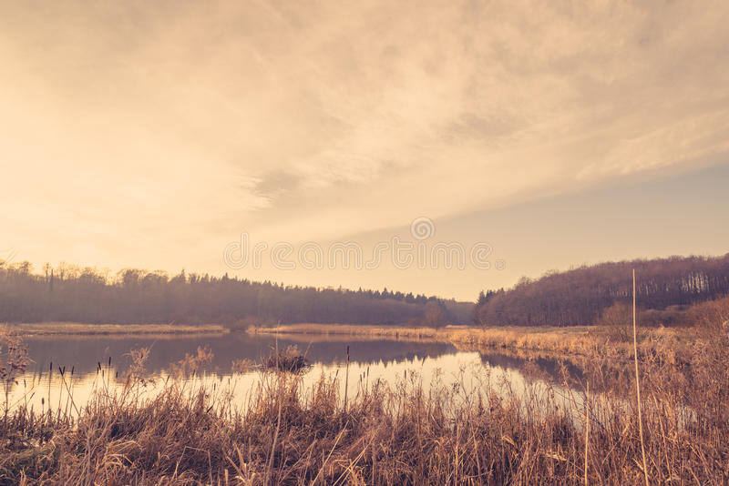 Тихое озеро в восходе солнца стоковое изображение rf