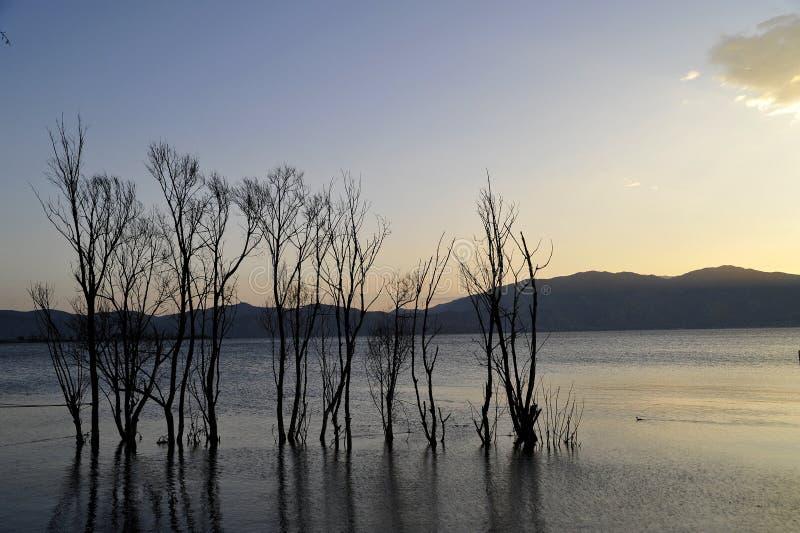 Тихое озеро Erhai стоковые фото