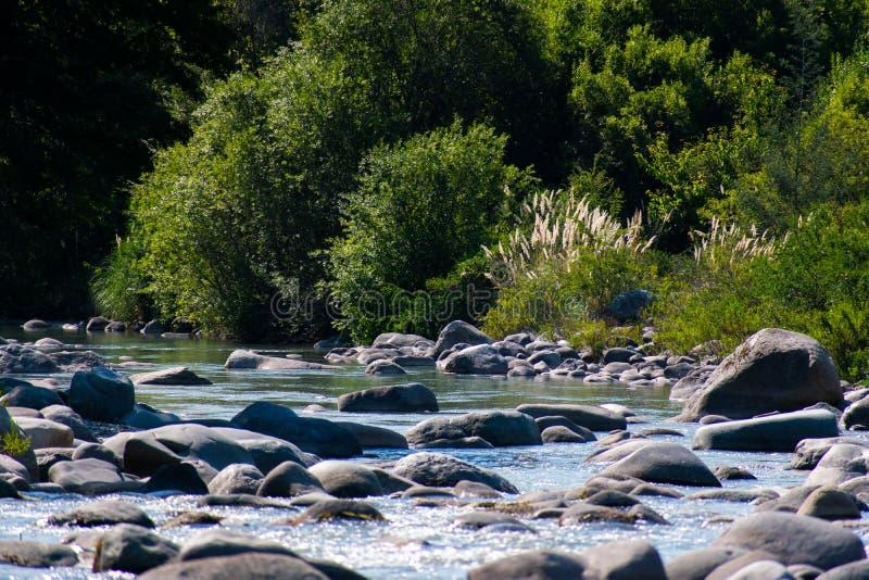 Тихое река стоковое изображение rf