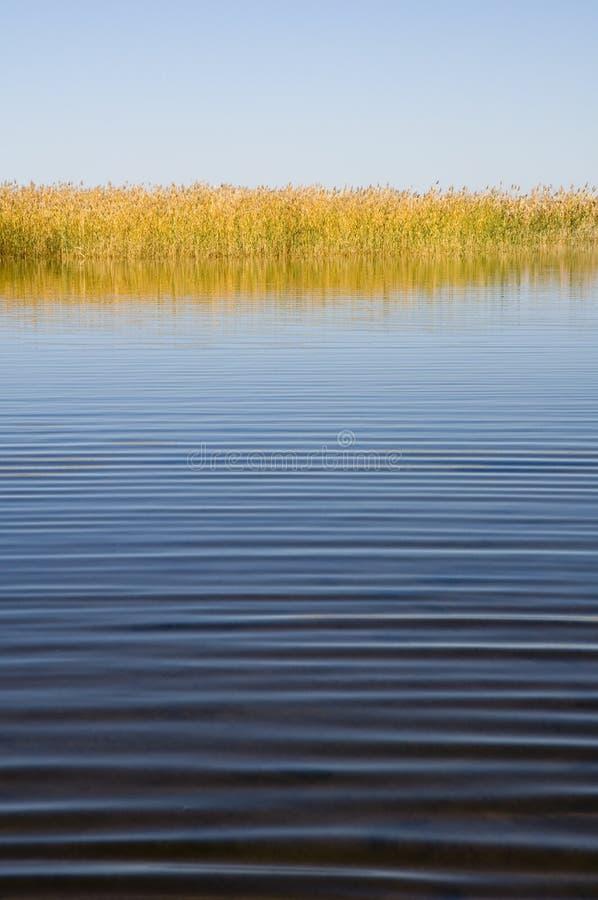 тишь озера осени стоковое фото rf