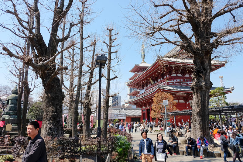 токио виска sensoji стоковая фотография