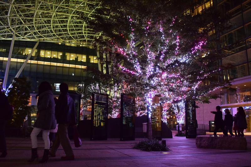 ТОКИО, ЯПОНИЯ 2014: красивые освещения декорумов приведенных светов стоковые изображения rf