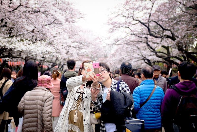 ТОКИО, ЯПОНИЯ - 30-ОЕ МАРТА: Соедините принимать selfie под японский вишневый цвет на парке Ueno Парк Ueno самое известное место  стоковые изображения