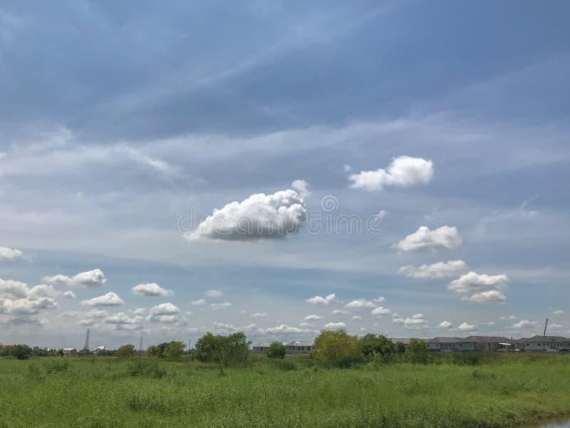 Толстые пушистые облака и поле травы стоковые фотографии rf