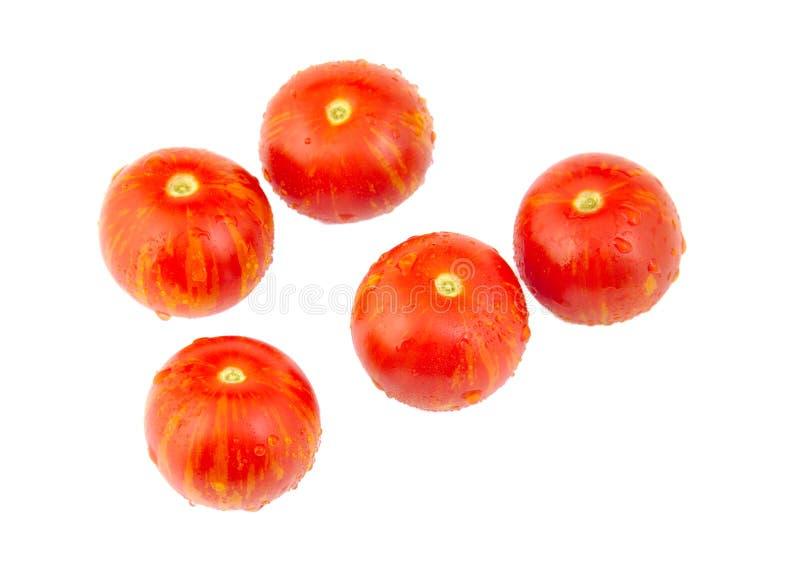 5 томатов вишни изолированных на белизне стоковые изображения