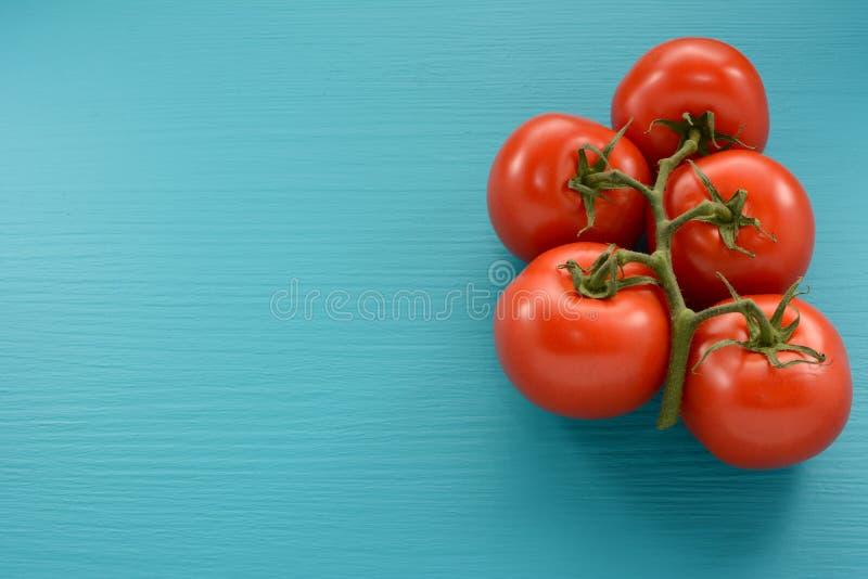 5 томатов на лозе на голубой предпосылке стоковая фотография