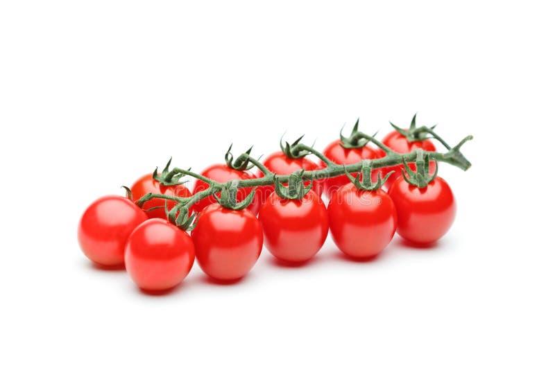томаты вишни близкие свежие зрелые вверх стоковое фото