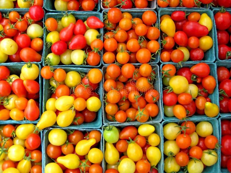 томаты вишни корзин стоковые фото