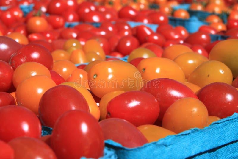томаты вишни корзин стоковое изображение