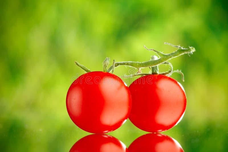 Download томаты вишни стоковое изображение. изображение насчитывающей макрос - 18380895