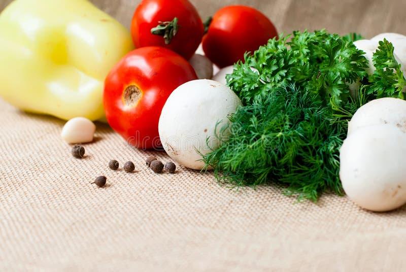 Томаты, грибы, перец, травы и специи стоковые изображения