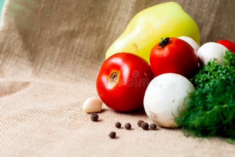 Томаты, грибы, перец, травы и специи стоковое изображение