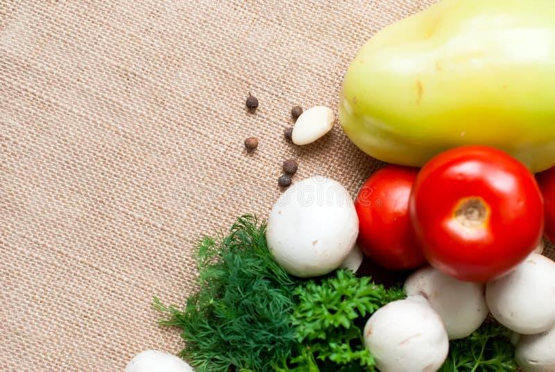 Томаты, грибы, перец, травы и специи стоковое фото rf