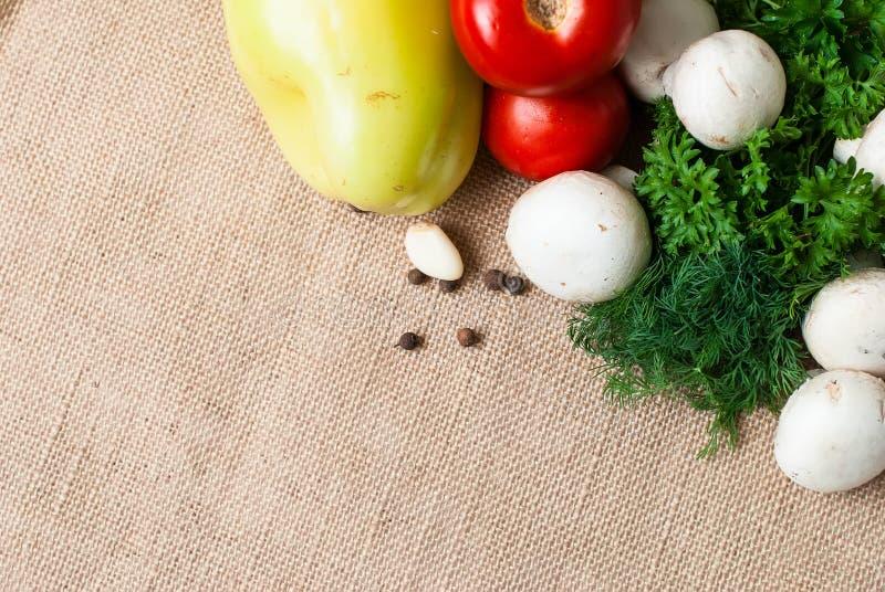 Томаты, грибы, перец, травы и специи стоковые изображения rf