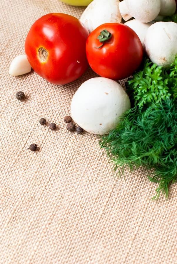 Томаты, грибы, перец, травы и специи стоковая фотография