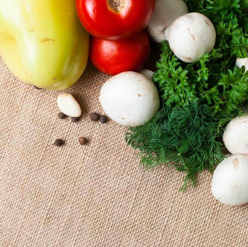 Томаты, грибы, перец, травы и специи стоковая фотография rf