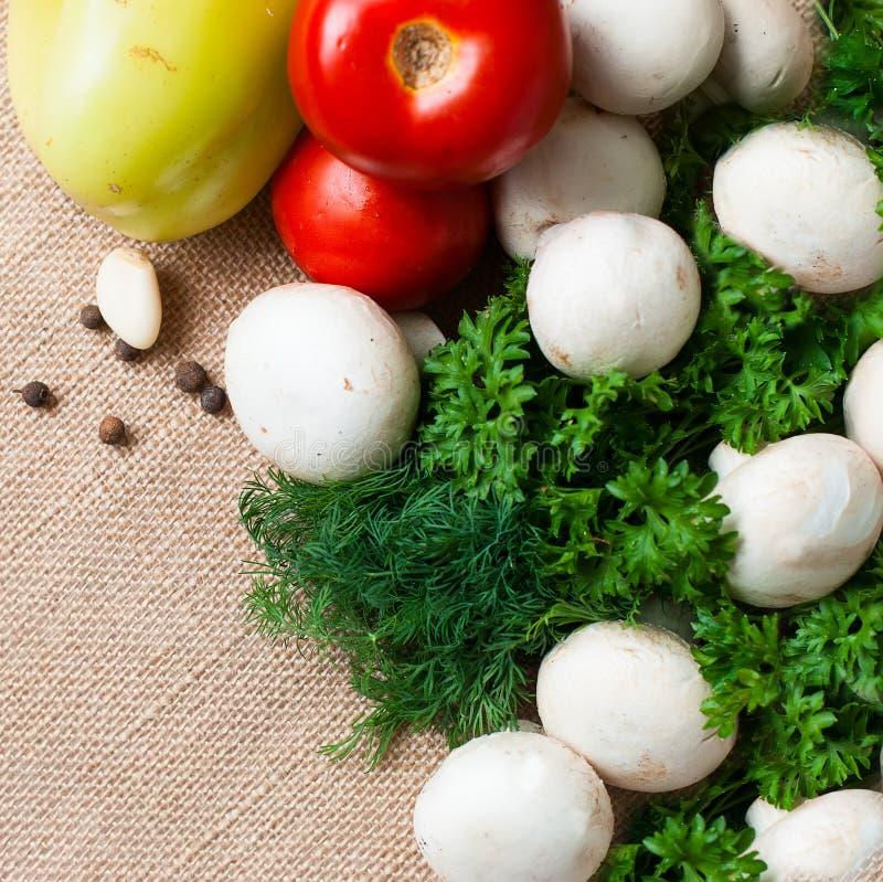 Томаты, грибы, перец, травы и специи стоковые фотографии rf