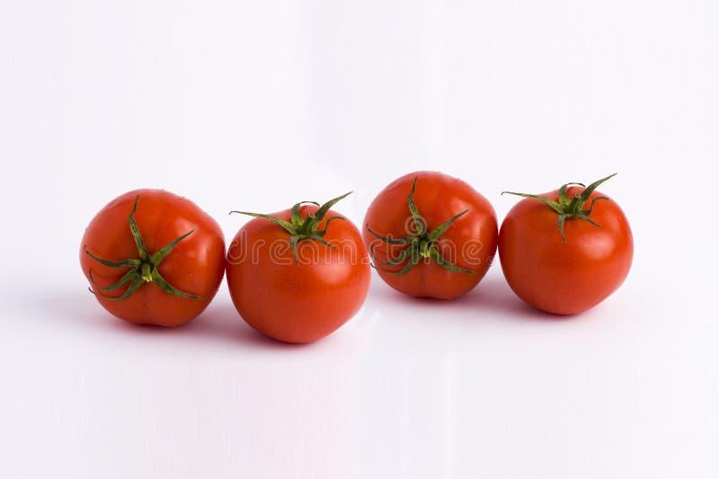 томаты предпосылки свежие белые 4 красных зрелых томата изолированного на белой предпосылке томаты предпосылки белые стоковые фотографии rf