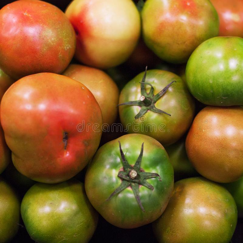 томаты предпосылки свежие Органические зрелые различные томаты в mar стоковое изображение rf