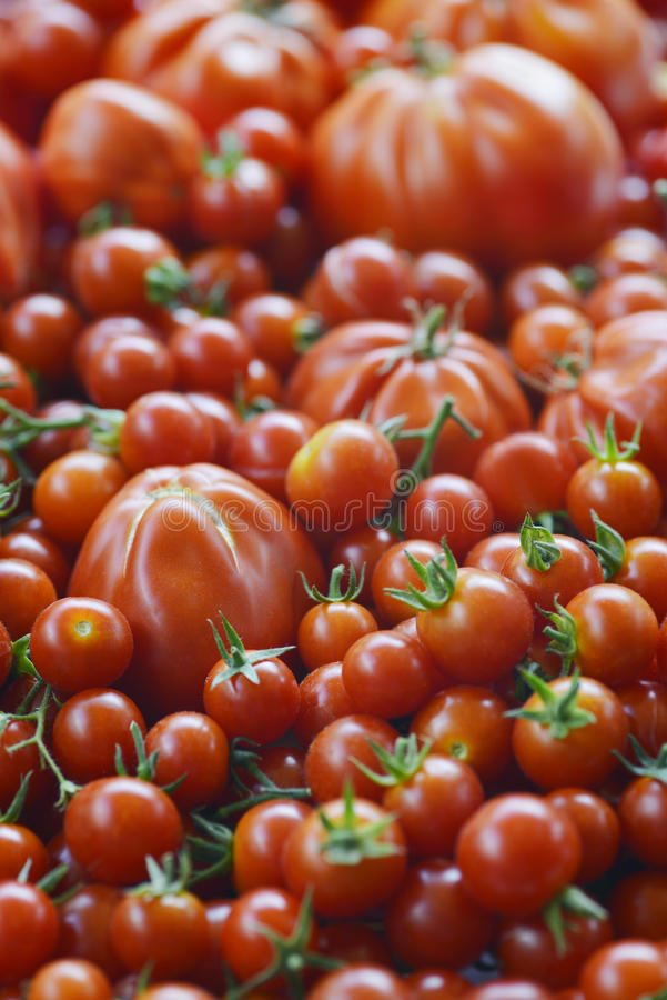 томаты серии еды предпосылки стоковые фото