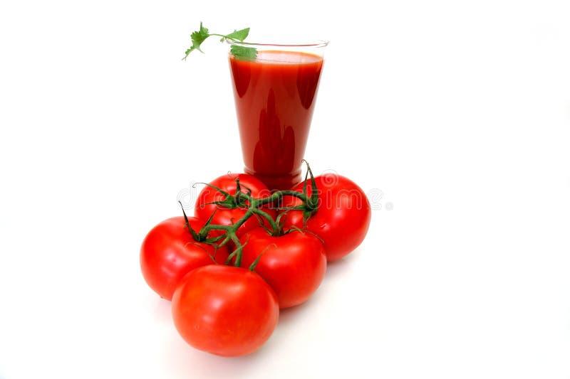 томаты томата сока стоковые изображения