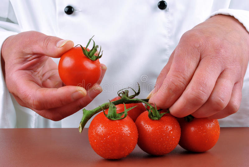 томаты удерживания пар шеф-повара женские свежие стоковые фотографии rf